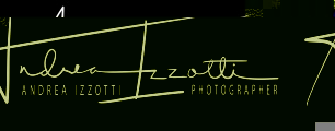 andreaizzotti.it logo